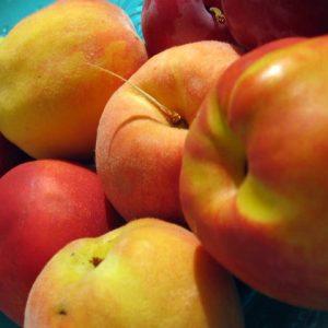 Les fruits d'été, préparez votre cueillette !