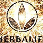 Très bonne année 2014 de la part d'Herbalife !