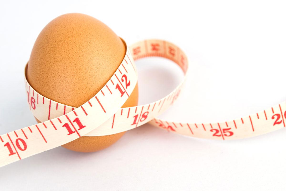 5 raisons de consommer des oeufs pour perdre du poids