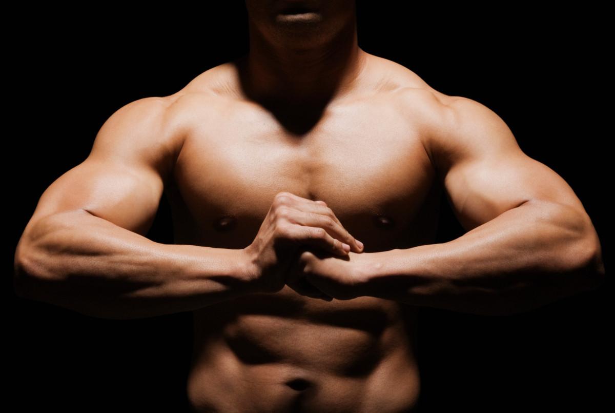 Comment se développent les muscles ?