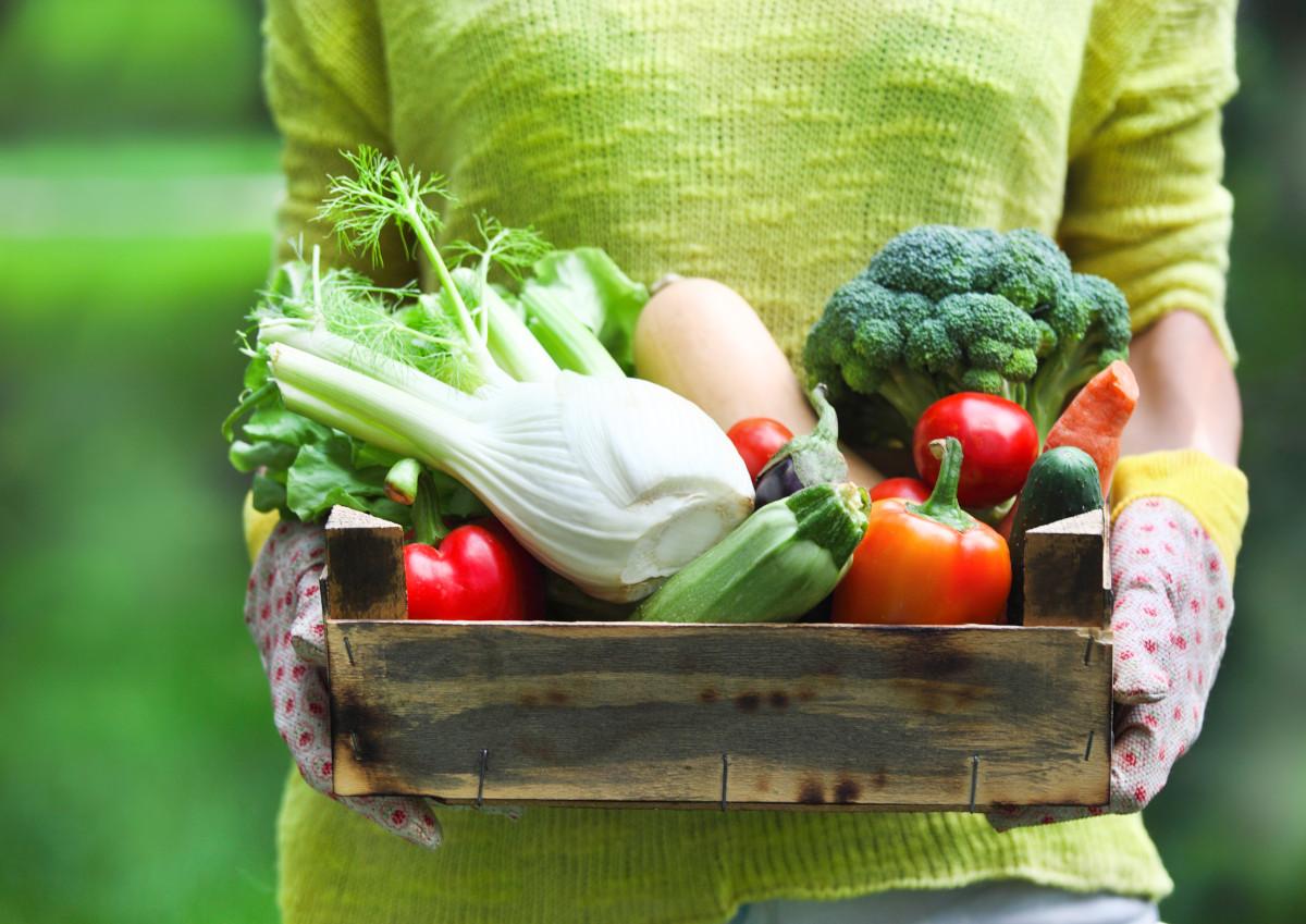 Voici les nutriments essentiels auxquels nous devrions être plus attentifs