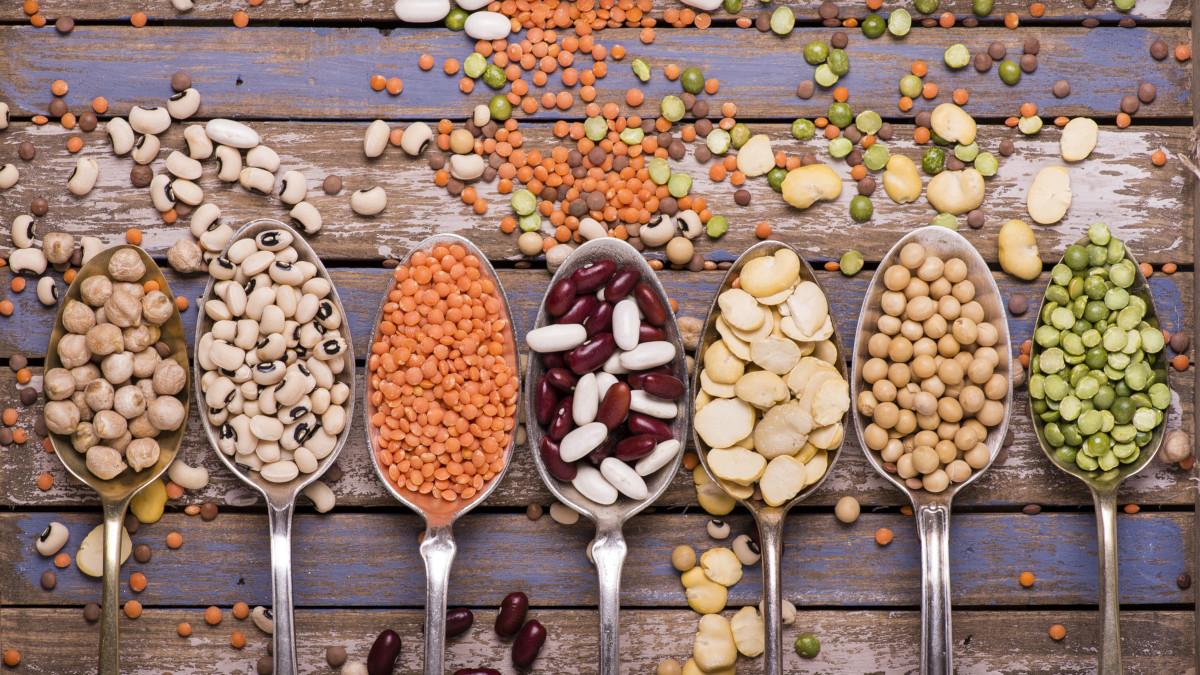 Comment maximiser ses apports en protéines quand on est végétarien ?